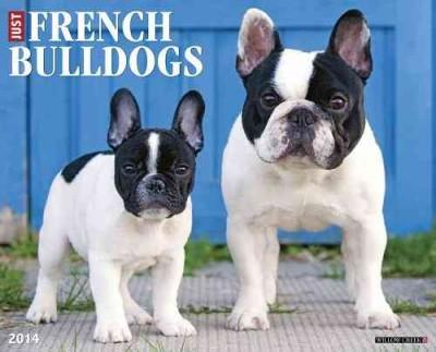 Just French Bulldogs 2014 Calendar (Calendar)