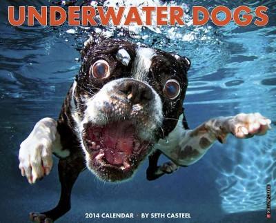 Underwater Dogs 2014 Calendar (Calendar)