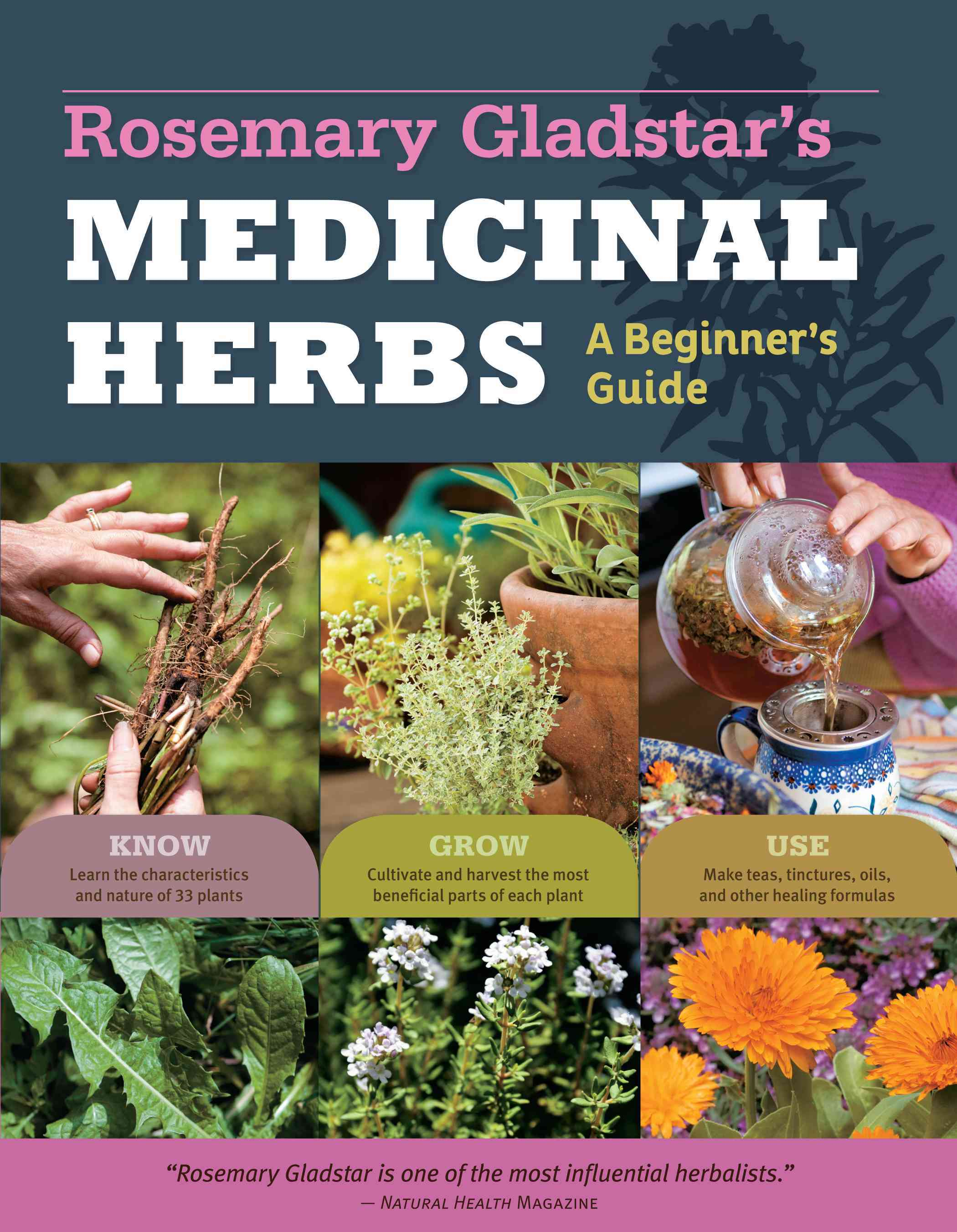 Rosemary Gladstar's Medicinal Herbs: A Beginner's Guide (Paperback)