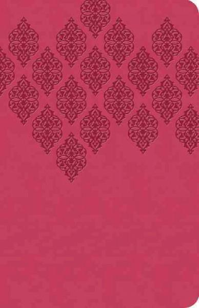 The KJV Study Bible: King James Version, Pink, Study Bible (Paperback)