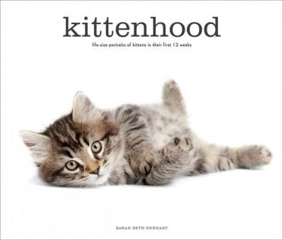 Kittenhood: Life-Size Portraits of Kittens in Their First 12 Weeks (Hardcover)