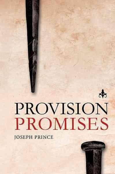 Provision Promises (Hardcover)