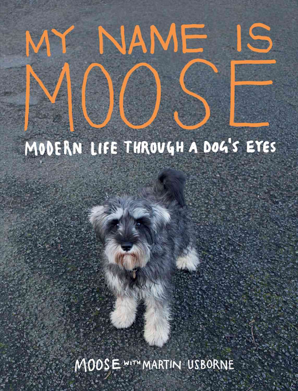 My Name Is Moose: Modern Life Through a Dog's Eyes (Hardcover)