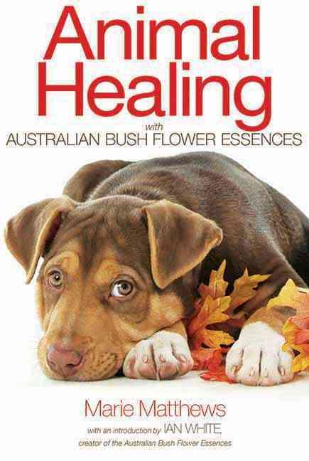 Animal Healing With Australian Bush Flower Essences (Paperback)