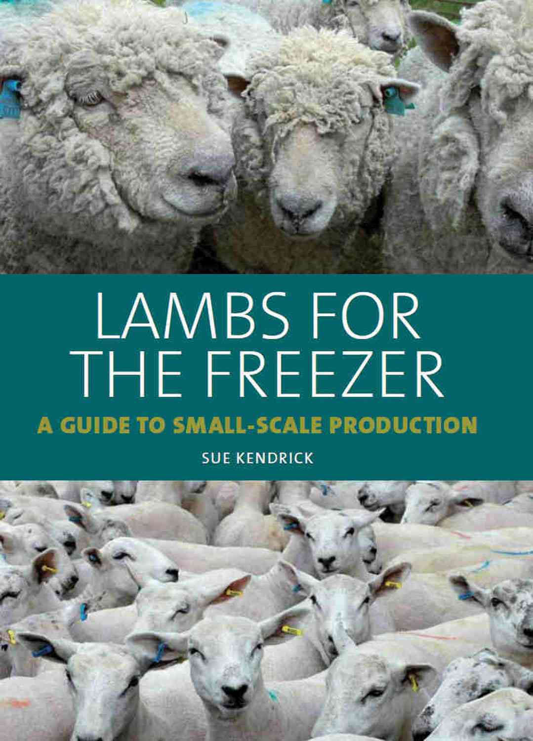 Lambs for the Freezer: A Guide to Small-scale Production (Hardcover)