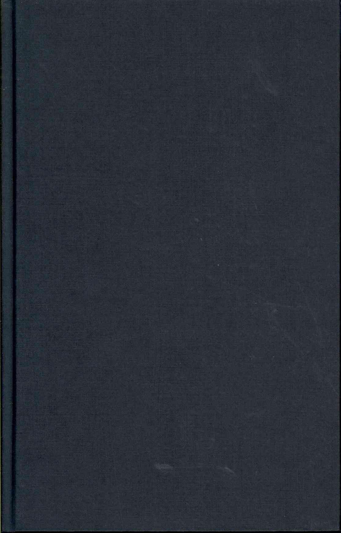 Hunting the Dark Knight: Twenty-First Century Batman (Hardcover)