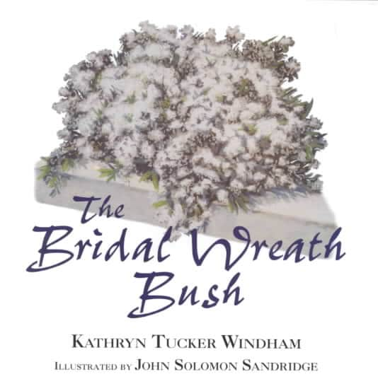 Bridal Wreath Bush (Hardcover)