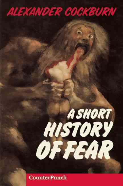 Short History of Fear (Paperback)