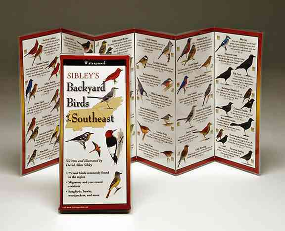 Sibley's Backyard Birds of the Southeast (Wallchart)