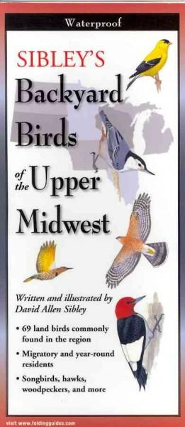 Sibley's Backyard Birds of the Upper Midwest (Wallchart)