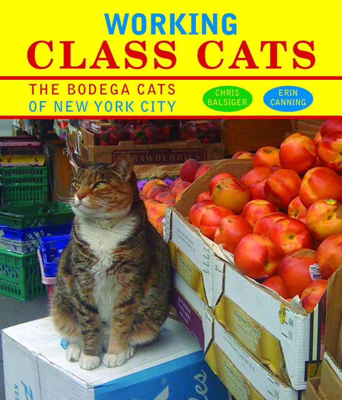 Working Class Cats: The Bodega Cats of New York City (Hardcover)