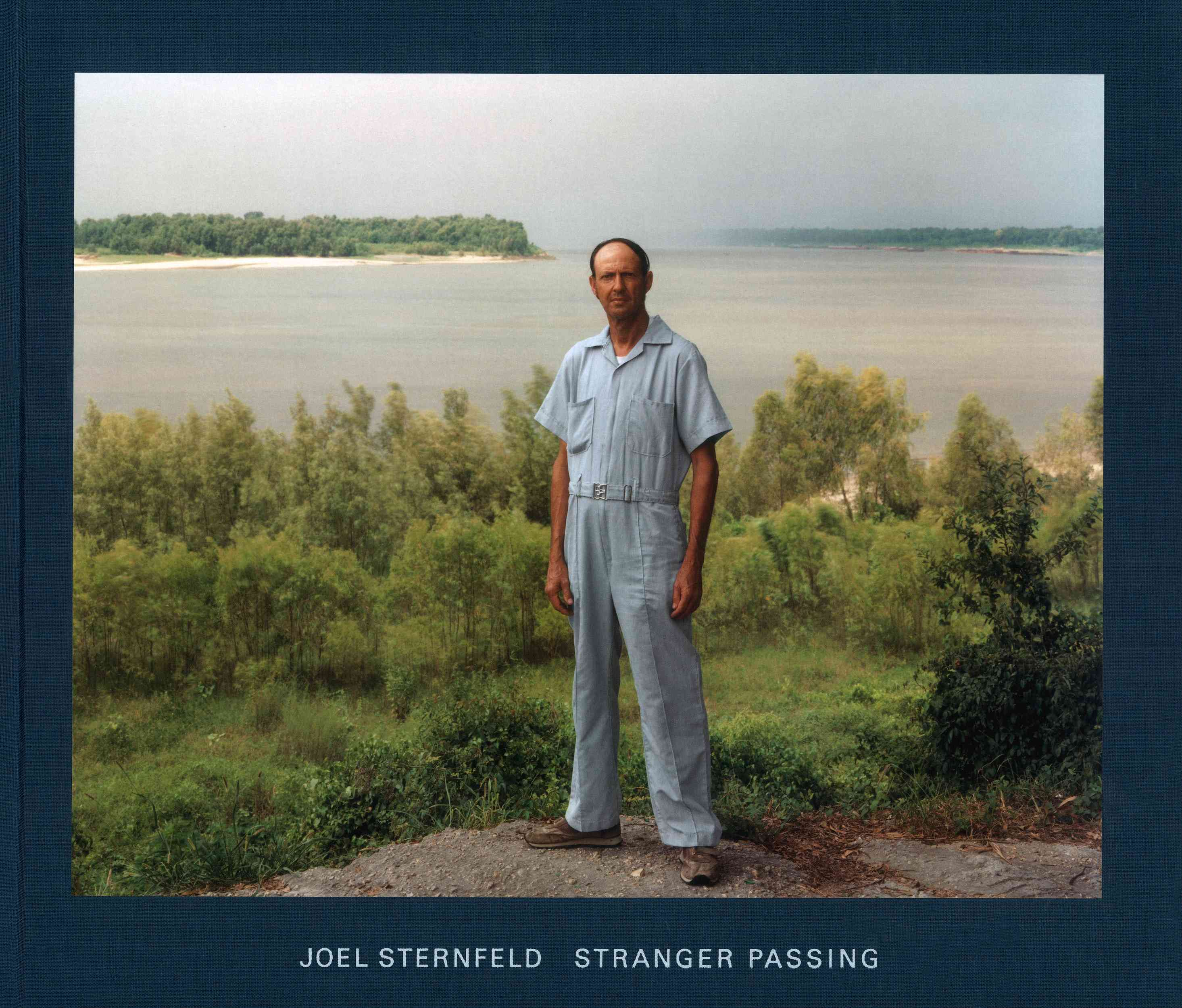 Stranger Passing (Hardcover)