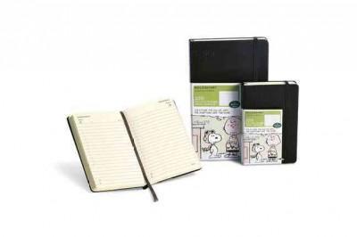 Moleskine Peanuts 2013 Large Daily Diary / Planner Agenda Journalier (Calendar)