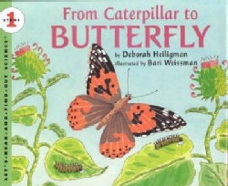 From Caterpillar to Butterfly (Hardcover)