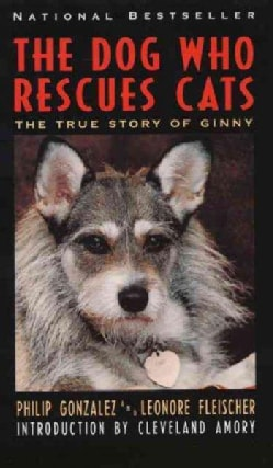 The Dog Who Rescues Cats: The True Story of Ginny (Paperback)