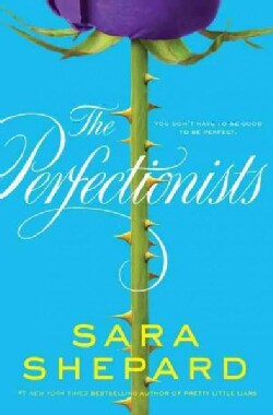 The Perfectionists (Paperback)