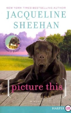 Picture This (Paperback)