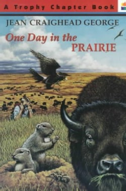 One Day in the Prairie (Paperback)