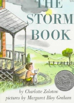 The Storm Book (Paperback)