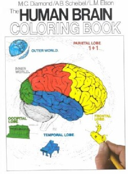 The Human Brain Coloring Book (Paperback)