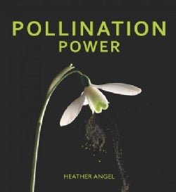 Pollination Power (Hardcover)
