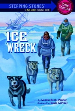 Ice Wreck (Paperback)