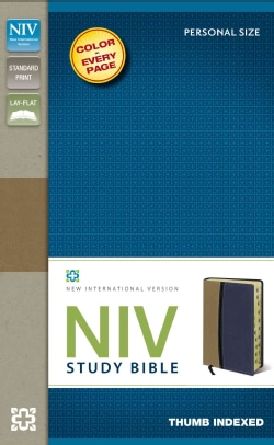 Study Bible: New International Version, Tan/Blue, Italian Duo-Tone, Personal Size (Paperback)