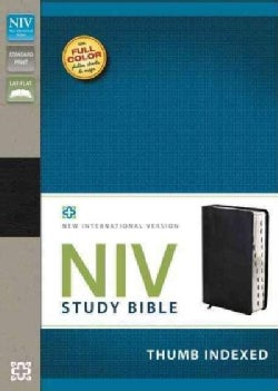 Holy Bible: New International Version Black Top Grain Leather Study Bible (Paperback)
