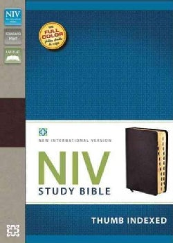 Niv Study Bible: New International Version, Burgundy, Bonded Leather (Paperback)