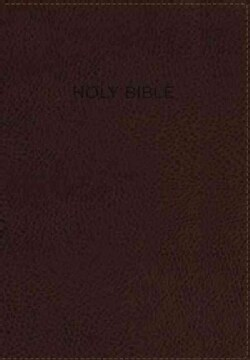 NIV Foundation Study Bible: New International Version, Earth Brown Italian Duo-Tone (Paperback)
