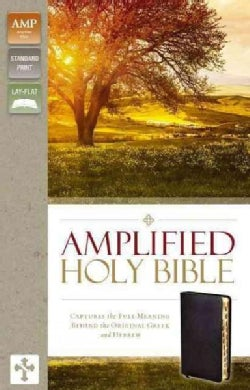 Holy Bible: Amplified, Black, Bonded Leather, Captures the Full Meaning Behind the Original Greek and Hebrew (Paperback)