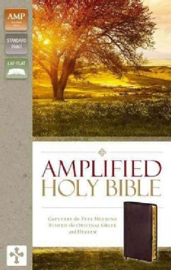 Amplified Holy Bible: Burgundy Bonded Leather, Captures the Full Meaning Behind the Original Greek and Hebrew (Paperback)