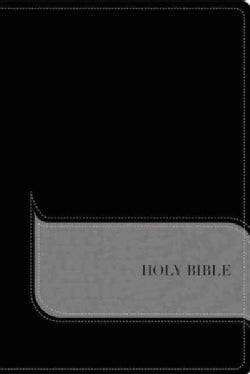 Holy Bible: Niv, Black/gray, Imitation Leather, Understand the Faith Study Bible: Grounding Your Beliefs in the T... (Paperback)