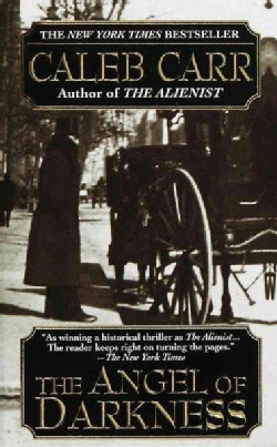 The Angel of Darkness (Paperback)
