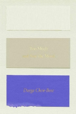 Too Much and Not the Mood: Essays (Paperback)