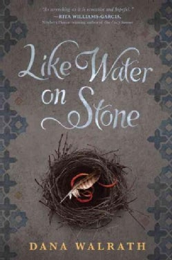 Like Water on Stone (Hardcover)