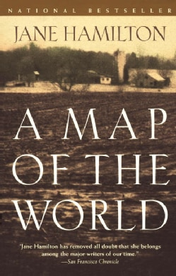 A Map of the World (Paperback)