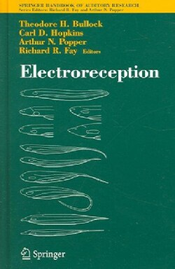 Electroeception (Hardcover)