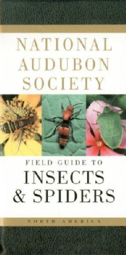 National Audubon Society Field Guide to North American Insects and Spiders (Paperback)
