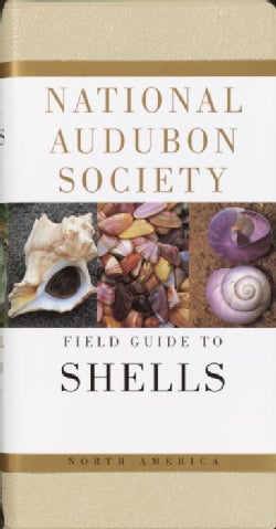 National Audubon Society Field Guide to North American Seashells (Paperback)