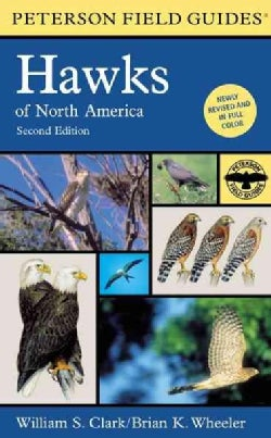 A Field Guide to Hawks of North America (Paperback)