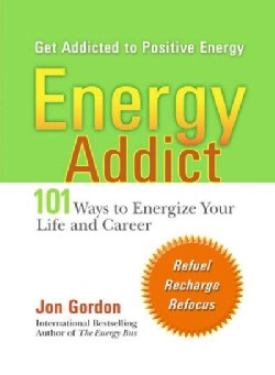 Energy Addict: 101 Physical, Mental, and Spiritual Ways to Energize Your Life (Paperback)