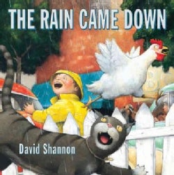 The Rain Came Down (Hardcover)