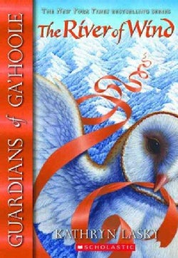 The River of Wind (Paperback)