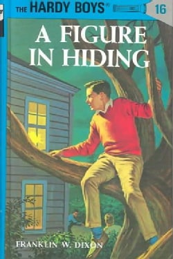 A Figure in Hiding (Hardcover)