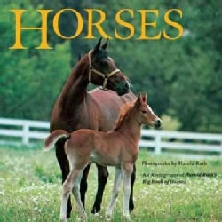Horses: An Abridgment of Harold Roth's Big Book of Horses (Paperback)