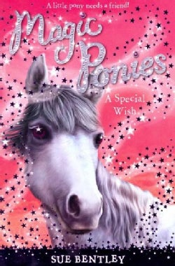 A Special Wish (Paperback)