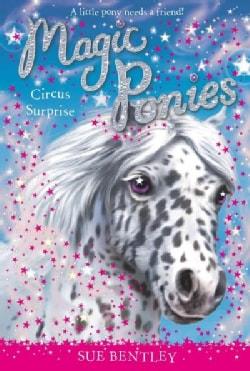 Circus Surprise (Paperback)