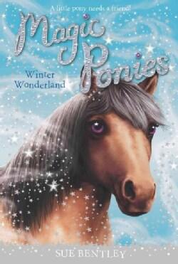 Winter Wonderland (Paperback)