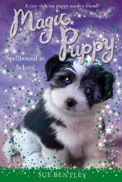 Spellbound at School (Paperback)